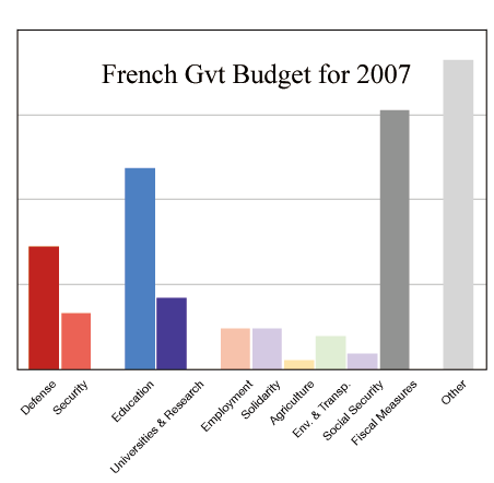 Budget of the French Government - 2007