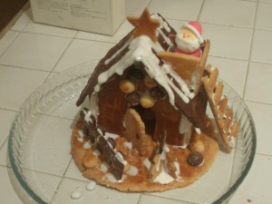 Finished *Cookie* House