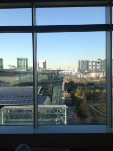Odaiba from Work